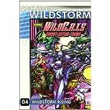 ARCHIVOS WILDSTORM: WILDC.A.T.S 4