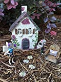 Miniature fairy garden house and 7 piece accessories starter kit (bundle) by WFG. Create Your Own Magical Fairy Garden.