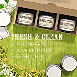 Old Factory Candles - Fresh & Clean - Scented Candles - Set of 3: Lemongrass, Olive Blossom, and Fresh Linen - 3 x 4-Ounce Soy Candles