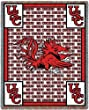 Univ of South Carolina Go Gamecocks - 69 x 48 Blanket/Throw - South Carolina Fighting Gamecocks