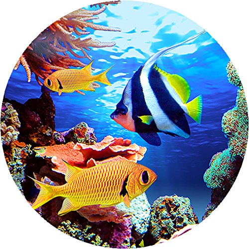 Projectables 11161 Led Plug-in Night Light (Tropical Fish), Multi at Gotham City Store