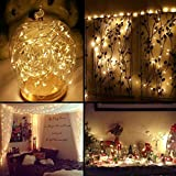 Ollny-Waterproof-Copper-Wire-String-Lights-100-LED-33ft-Starry-String-Lights-Steady-on-12V-DC-Power-for-Christmas-Wedding-Party-Home-Indoor-and-Outdoor-Decoration-Warm-White