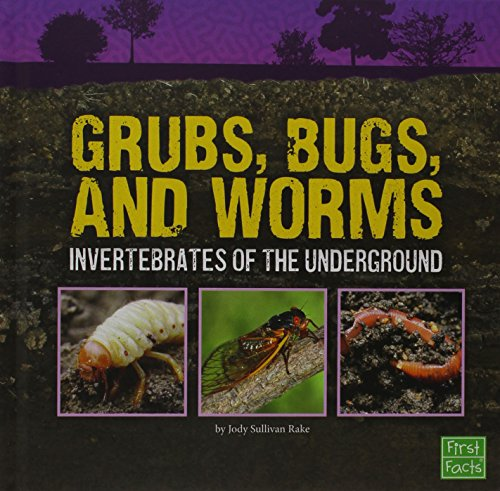 grubs-bugs-and-worms-invertebrates-of-the-underground-underground-safari