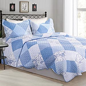 Bedsure Flourish Style 3-Piece All Season Classic Quilt Set - Quilt and Sham, Bedspread and Coverlet, Hypoallergic and Lightweight -- Full/Queen, Floral #8