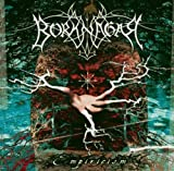 Empiricism by BORKNAGAR (2012-02-21)