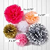 Tissue Paper Pom Poms - 18 Pom Pom Set - Paper Flowers For Pink and Gold Party Supplies, Birthday Party Decorations, Tassel Garland Banners For Wedding, Bachelorette Party Kit, Baby Shower
