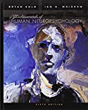 img - for Fundamentals of Human Neuropsychology book / textbook / text book