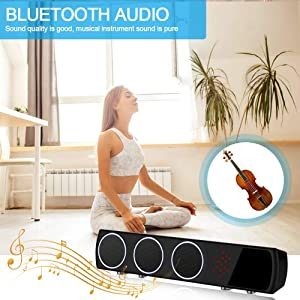 Hidden Spy Camera in Bluetooth Speaker with Stronger Night Vision,YuanFan Wireless Hd 1080P Nanny Cam, Motion Detection WiFi Smart Security Monitoring Home Office Shop (Color: Black)