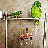 Healthy Clubs Vogelspielzeug zum Aufhängen, Schaukel aus Holz, mit Glocken, für Sittiche -