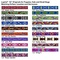"""LupinePet Originals 1/2"""" Rain Song Cat Safety Collar with Bell , 8-12"""""""