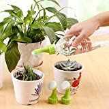 Sellify 1Piece Small Gardening Tool Watering Sprinkler Portable Household Potted Plant Waterer Garden Tool