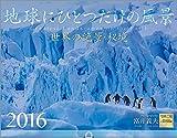 富井義夫 地球にひとつだけの風景 2016年 カレンダー 壁掛け