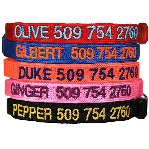 Custom Embroidered Cat Id Collars with Breakaway Safety Release Buckle - Personalized Kitty Collars with Pet Name and Phone number. Adjustable. (Pet Collar Custom compare prices)