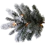 Pre-Lit 9-Feet Slim Winter Frost Pine Artificial Christmas Tree, Clear Light, 1469 Tips