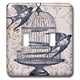 PS Vintage - Vintage Birds with Bird Cage Steampunk Art - Light Switch Covers - double toggle switch (lsp_110264_2)