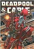 Deadpool & Cable Omnibus