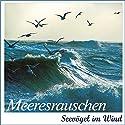 Meeresrauschen: Seevögel im Wind Hörbuch von Karl Heinz Dingler, Alfred Werle Gesprochen von:  div.