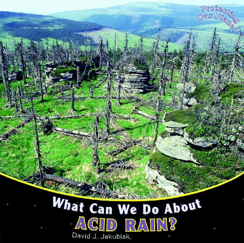 What Can We Do About Acid Rain Protecting Our Planet