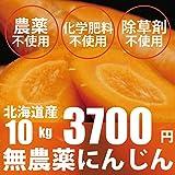 無農薬・無化学肥料 洗い人参 にんじん 10kg