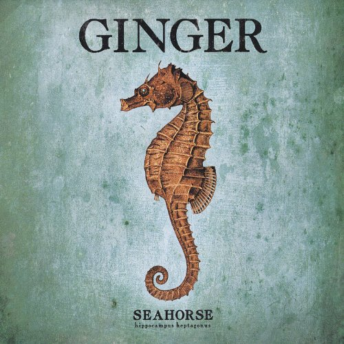 Ginger - Seahorse - Zortam Music