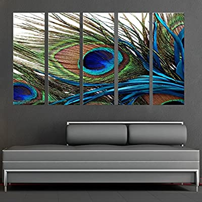 CanvasCEO Peacock Feather 5 Panel Set Wall Art Decor Canvas Framed Ready to Hang Print Fiberboard