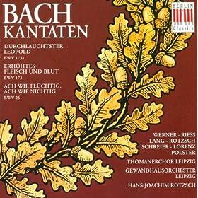 Erhohtes Fleisch und Blut, BWV 173: Recitative: Erhohtes Fleisch und Blut (Tenor)