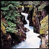 echange, troc Cat Stevens, Weller Don - Back To Earth