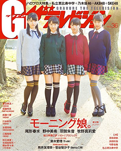 G(グラビア)ザテレビジョン VOL.36 62485-64 (ムック)