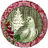 Paperproducts Design 28073 Winter Woods Owl Salad Dessert Porcelain Plate, Multicolored