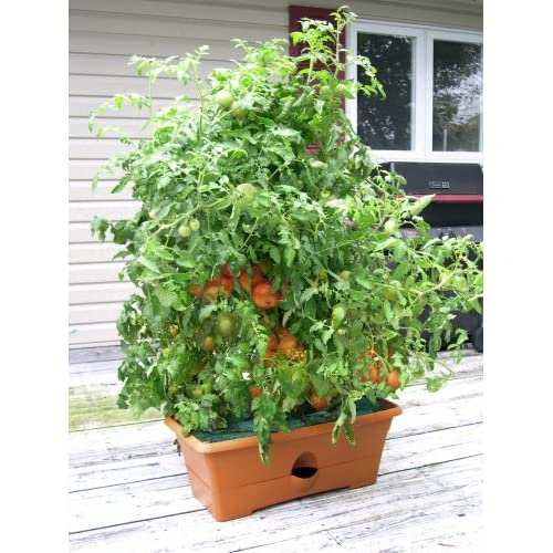 Outdoor Planters Self Watering Red Planter Box By Monkey Pots