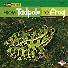 From Tadpole to Frog Audiobook by Shannon Zemlicka Narrated by  Intuitive