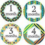 Baby Colorful Monthly Stickers - Milestone Onesie Stickers - 1-12 Months - Pinkie Penguin