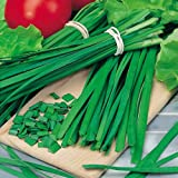 Suttons Seeds 150150 Chives Garlic Seed