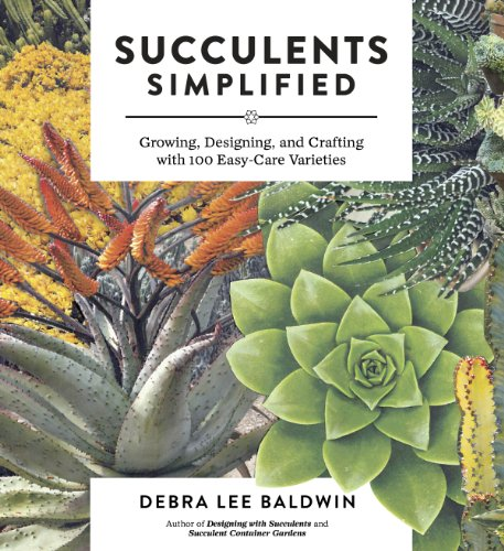 Succulents Simplified: Growing, Designing, and Crafting with 100 Easy-Care Varieties (Succulent Baskets compare prices)
