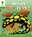 What Is It?. Roderick Hunt, Thelma Page (Ort More Patterned Stories)