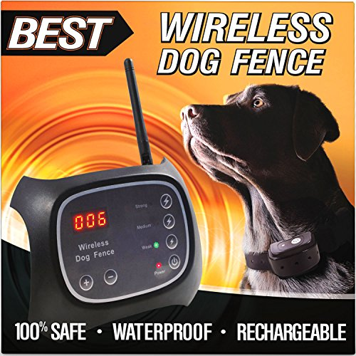 click photo to check price 2 best wireless dog fence