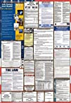 California  Federal Combination Labor Law Posters 2013