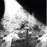 Buy Godspeed You! Black Emperor -Asunder, Sweet and Other Distress New or Used via Amazon
