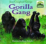 Animal Kingdom: Gorilla Gang (Disney's Animal Kingdom)