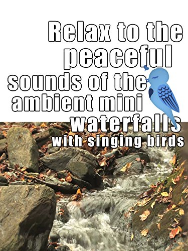 Relax to the peaceful sounds of the ambient mini waterfalls with singing birds
