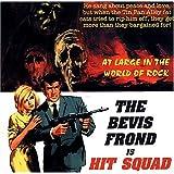 """Hit Squadvon """"Bevis Frond"""""""