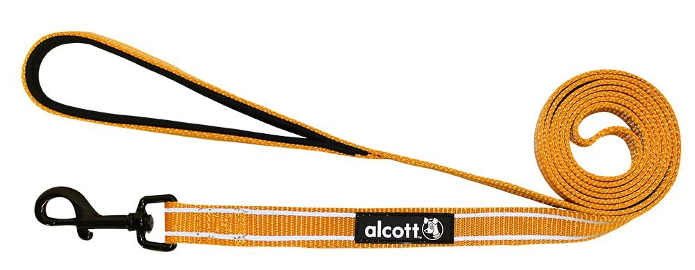 Alcott Traveler Adventure Pet Leash, Medium, Orange