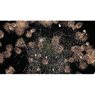 花火が2倍楽しくなる笑い飯哲夫のおもしろ花火講座 (オリジナル特典なし) [DVD]