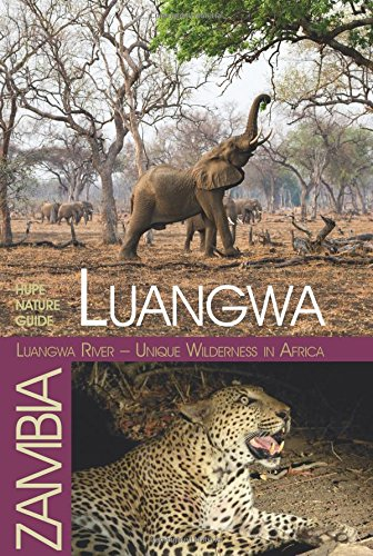 luangwa-unique-wilderness-in-africa-hupe-nature-guide-luangwa-valley-zambia