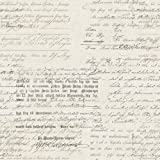 "Vintage 1604 Vliestapete Kalligraphie verblasst Beton Beigevon ""BorasTapeter"""