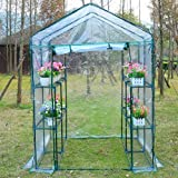 Outsunny 4.7' x 4.7' x 6.4' Portable Walk-in Flower Green House Greenhouse Plants Warm Garden Patio Transparent