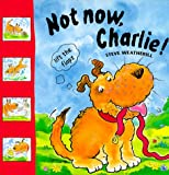 img - for Not Now, Charlie! (Lift the Flaps) book / textbook / text book