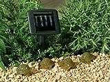 Smart Solar 3243AMM4 4-LED Turtle String Lights