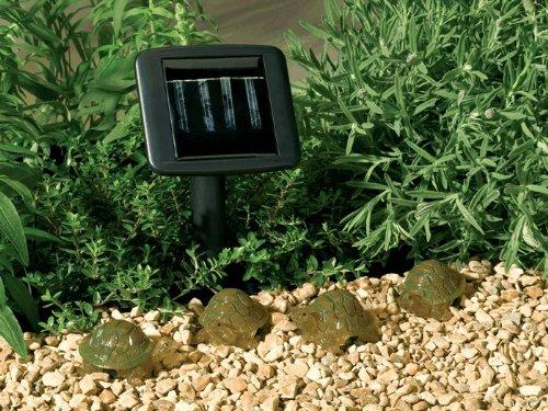 brand new 8c78c 01fcf Best Price Smart Solar 3243AMM4 4-LED Turtle String Lights ...