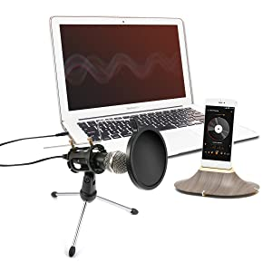 Condenser Microphone,NASUM 3.5mm Recording Microphone Plug and Play,Computer microphone with filter suitable for Voice Recording,Podcasting,Skype,YouTube,Games,Google Voice Search (Color: Black, Tamaño: 3.5MM)